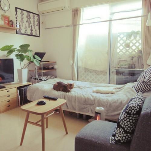 single-female-room_015