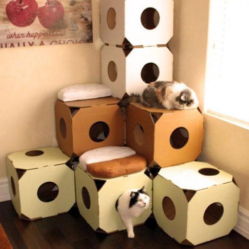 段ボールを組み立てて造る「猫ハウスモジュール」です。