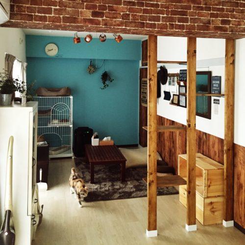 ・例2)部屋の間仕切り代わりにキャットタワーを活用