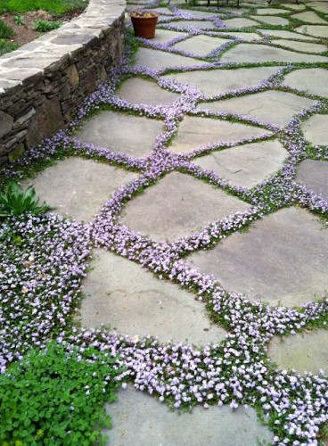 gardening-idea-diy_005