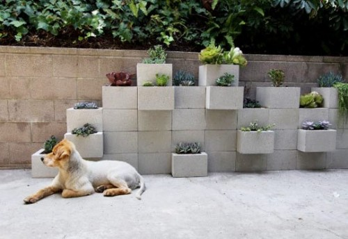 gardening-idea-diy_006