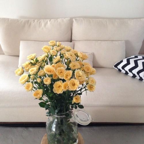 ikea-sofa-room_01