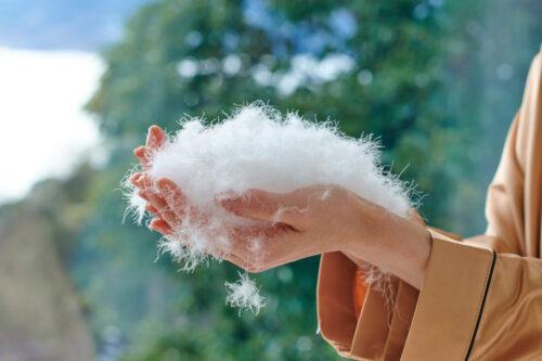 日本産高級羽毛布団 和雲