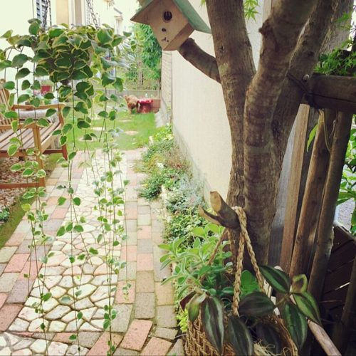 庭や花壇をレンガでDIY