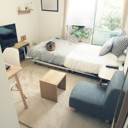 one-room-layout01
