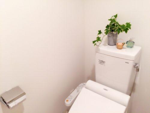 きれいで快適に過ごせるトイレというのが風水的にもいいトイレという事になるでしょうか。  陰気がこもりやすいので、芳香剤を置いたり、観葉植物で陰気を取り払うのもいいことです。