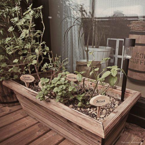 ウッドデッキに張り替えるとオシャレなベランダ菜園に