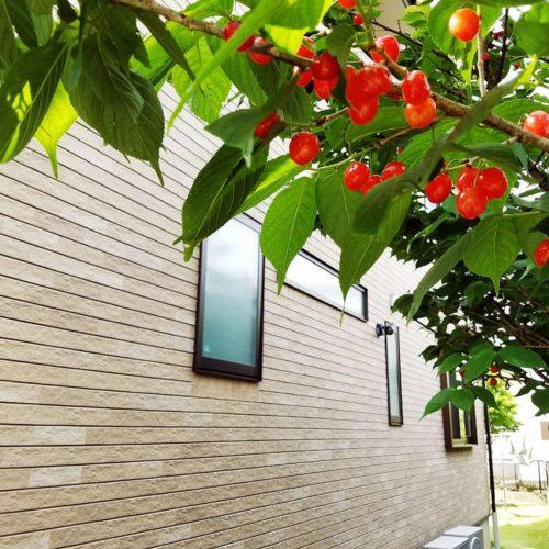 外壁の色のおすすめは?おしゃれな人気色や色あせに強いのは? さくらんぼ