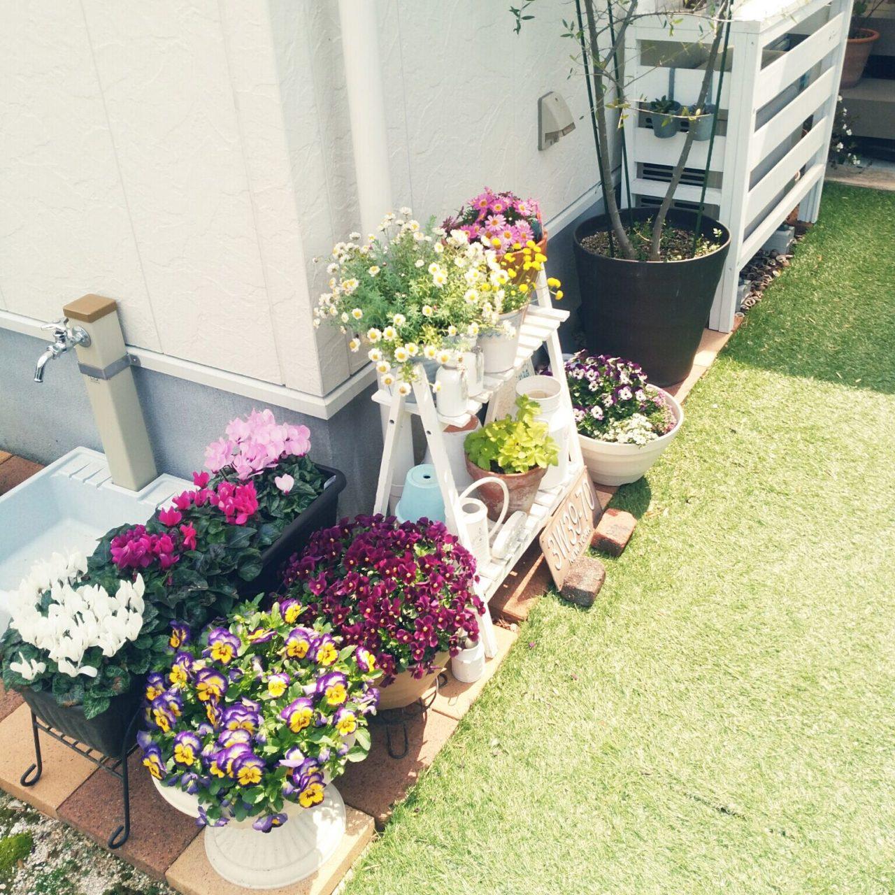 女性で、3LDKの狭い庭/ワイルドストロベリー/せまい庭/ガーデン/ガーデン雑貨/春…などについてのインテリア実例を紹介。