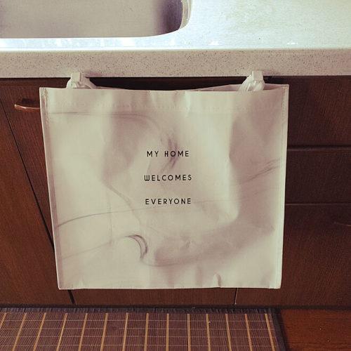 キッチンゴミ箱収納場所袋