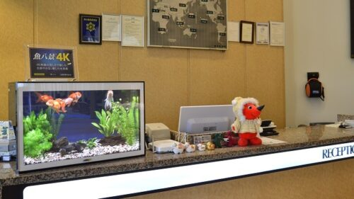 バーチャル水槽「魚八景 4K」